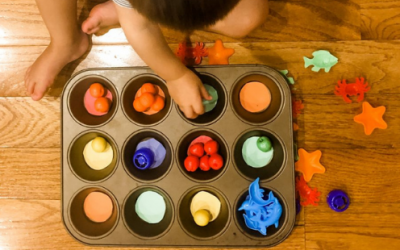 Sorting Colors With Muffin Tins Activity
