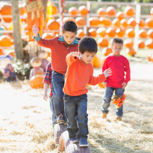 To help you plan the perfect day at a farm festival with young kids in tow, we've created a free printable interactive scavenger hunt list just for them.