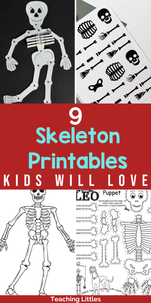 Are you looking for some skeleton printables for Halloween or teaching anatomy? Check out these awesome options for kids.